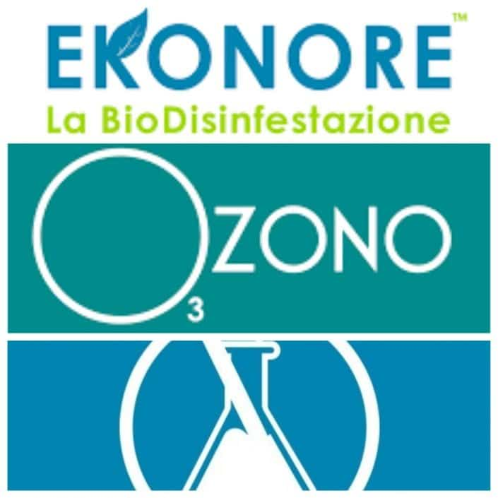 Ekonore cleaning with Albergo Marin